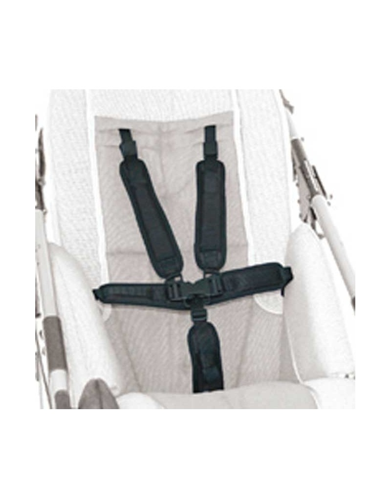 Tirante cinturón de seguridad 5 puntos AYUDAS DINÁMICAS accesorio Novus